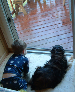 Boy and dog watching the rain