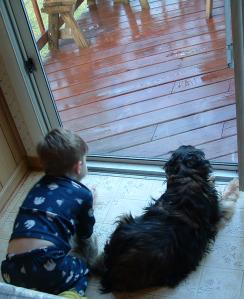 Boy and dog watching the rain